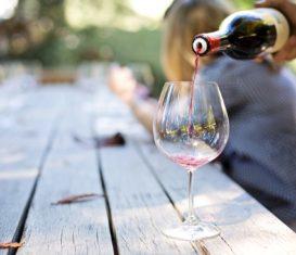 Que choisir entre un vin biodynamique et un vin bio ?